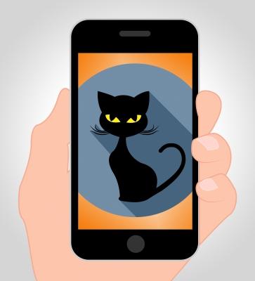 Why Do Millennials Love Cats?
